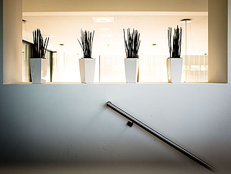 Vier hinterleuchtete Vasen am Treppenaufgang