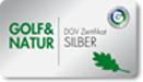 Logo DGV Silber